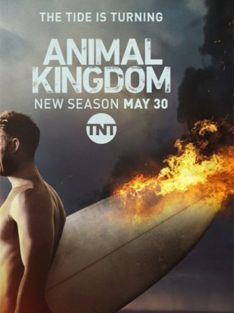 Сериал По волчьим законам / Animal Kingdom - 2 сезон (2017)